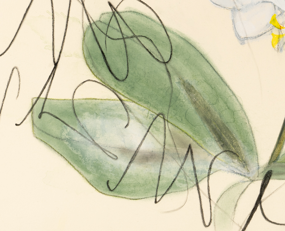 LauraLetchinger_ORCHID_24x24_h750-detail3-1723
